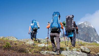 Photo of راهنمای خرید عصای کوهنوردی