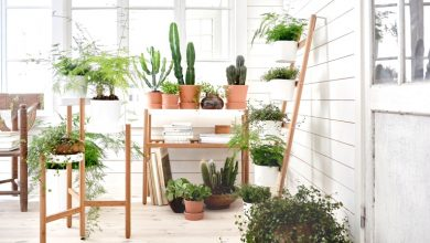 Photo of ۱۰ استند و آویز خلاقانه گلدان برای تزئین دکوراسیون خانه