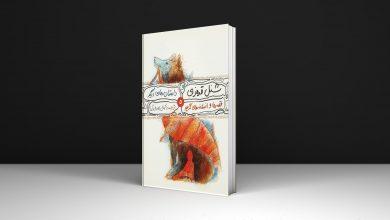Photo of ۹ کتاب قصه برای بچههای دبستانی