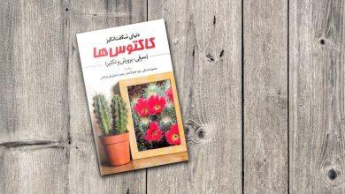 Photo of ۶ کتاب برای آموزش مراقبت از گیاهان در خانه