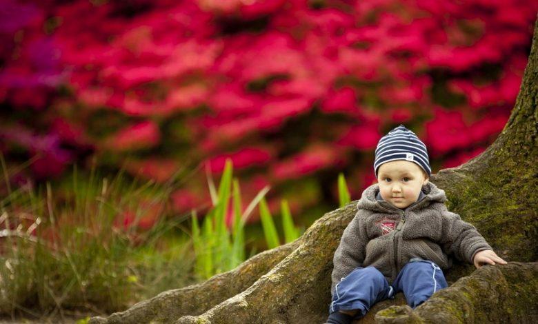 Photo of ست لباس پاییزی کودکانه به سبک پینترست، ویژه پسربچهها