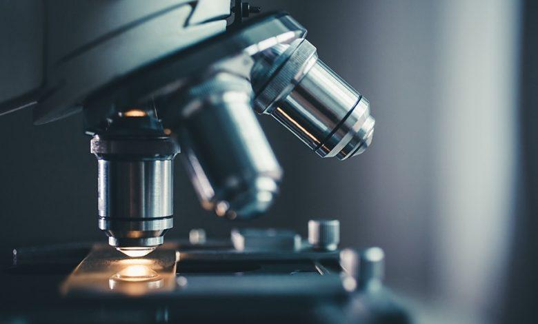 Photo of کدام میکروسکوپ اپتیکال را بخریم؟ معرفی ۴ مدل باکیفیت در بازار
