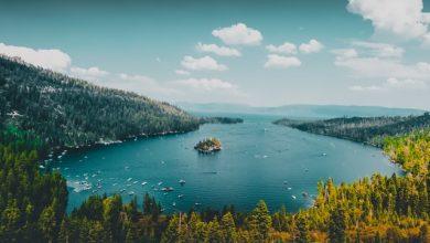 ۵ اپلیکیشن آرامشبخش از صداهای طبیعت برای آرام شدن شما